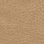 buckskin-150x150